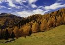 Landschaft 2013_2